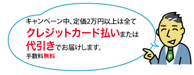キャンペーン中、定価2万円以上は全てクレジットカード払いまたは代引きでお届けします。手数料無料